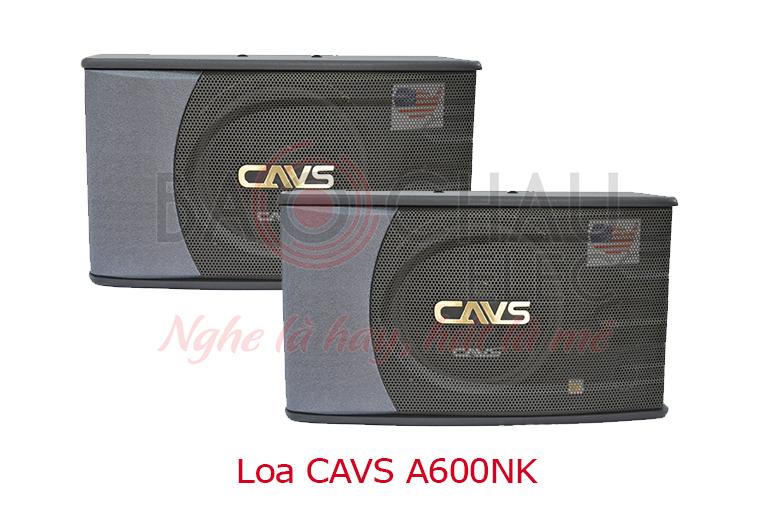 Loa CAVS A600NK