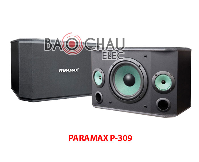 Loa PARAMAX P-309