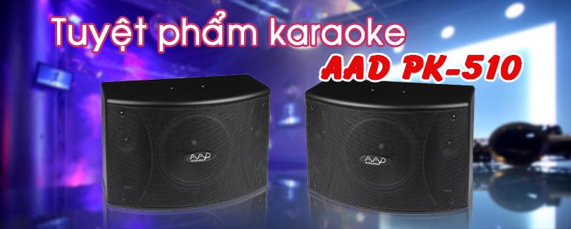 Loa AAD PK-510 2