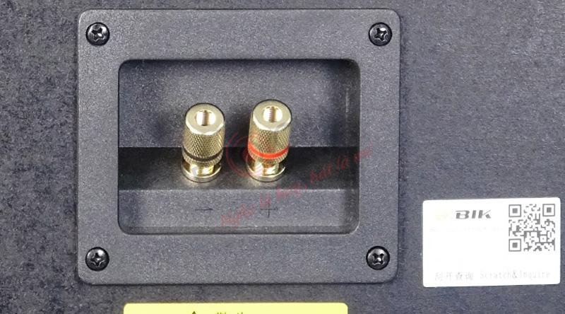 LoaBIKBJ-S668 trang bị 2 đầu kết nối chắc chắn, đảm bảo tín hiệu luôn được ổn định