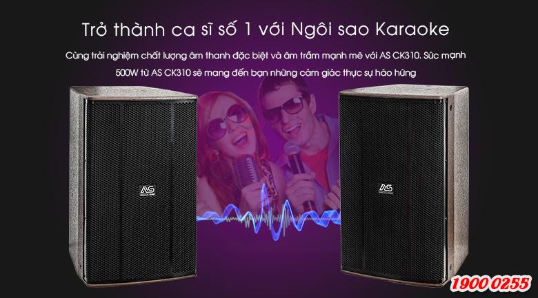 Loa karaoke AS CK-310 sẽ giúp cho bản nhạc giải trí của bạn trở nên hoàn mỹ hơn