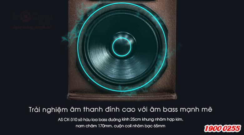 Đường kính loa bass 25cm sẽ mang tới những âm thanh đầy đặn, sâu dày hơn cho bản nhạc