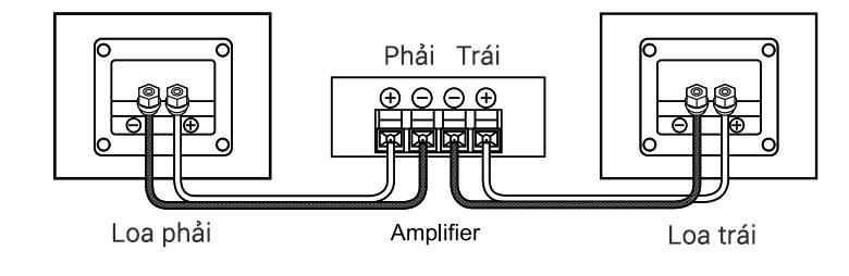 Hướng dẫn ghép nối loa BIK S886 với amply