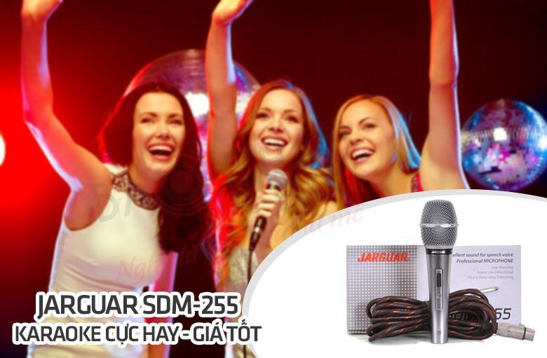 Micro dây Jarguar SDM-255 hát karaoke hay, giá tốt