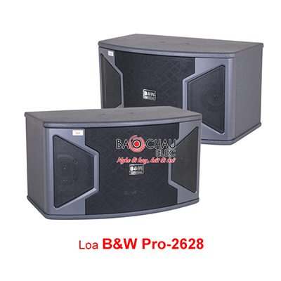 Loa B&W PRO 2628 (bass 25cm)