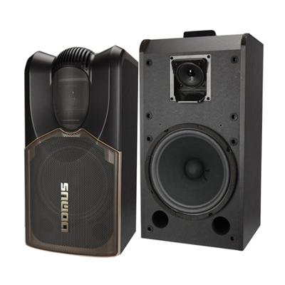 Loa Karaoke Domus DWV-1003 (bass 25cm)