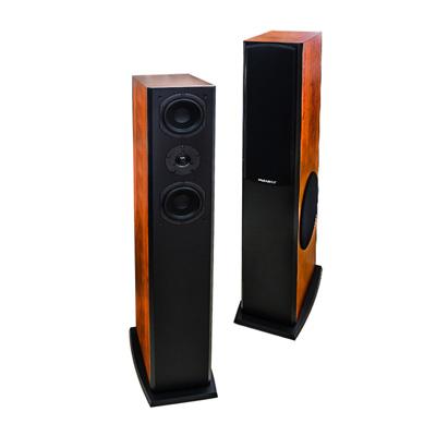 Loa Karaoke Paramax D2000S (bass 30cm)