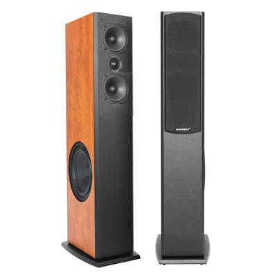 Loa Karaoke Paramax D2800