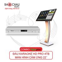 Combo VietKTV HD Pro 4TB + Màn hình 22inch