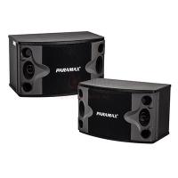 Loa Paramax P-500