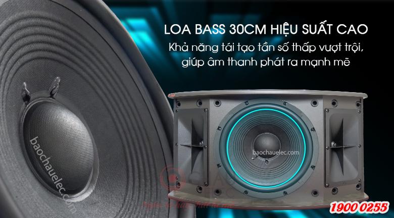 Loa bass 30cm hiệu suất cao