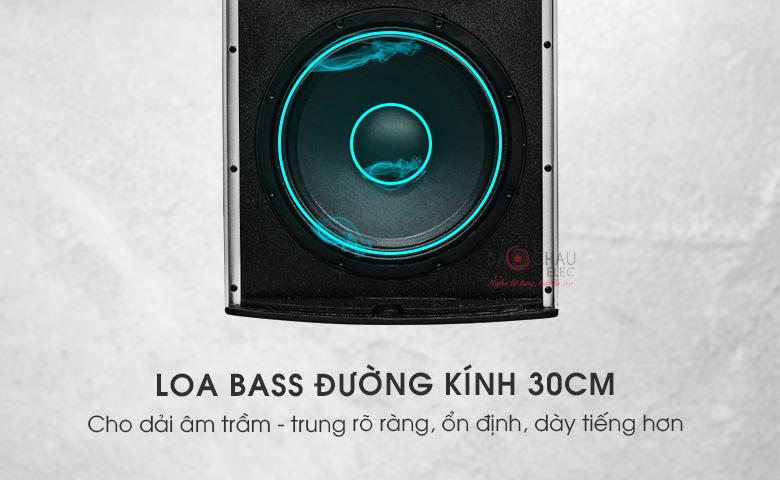 Loa Domus DP-8120 Loa full bass 30cm mang tới âm thanh mạnh mẽ