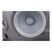 Loa Karaoke BMB CSN300(SE)