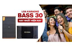 Loa karaoke bass 30 nào hay nhất hiện nay?