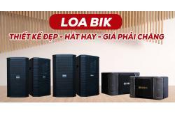Thiết kế đẹp, hát karaoke hay, giá phải chăng là những gì mà mẫu Loa BIK này có?