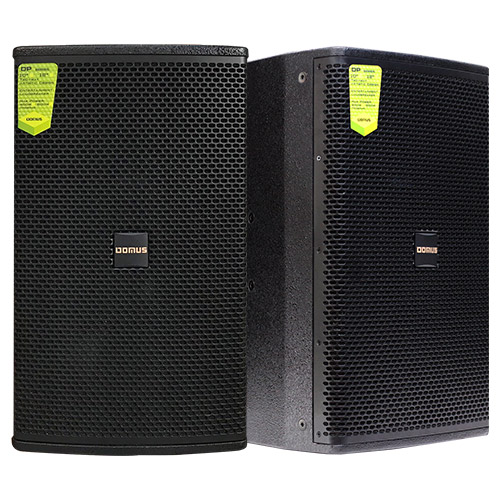 Loa Karaoke Domus DP6100 (Full đơn bass 25cm)