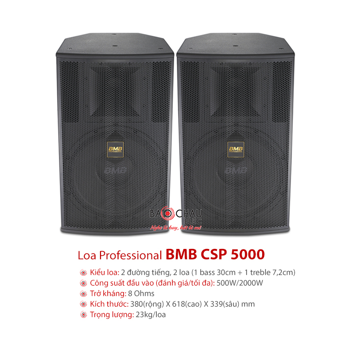Loa BMB CSP 5000