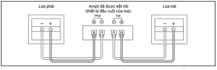 Cách kết nối loa BMB CSN-500 với amply
