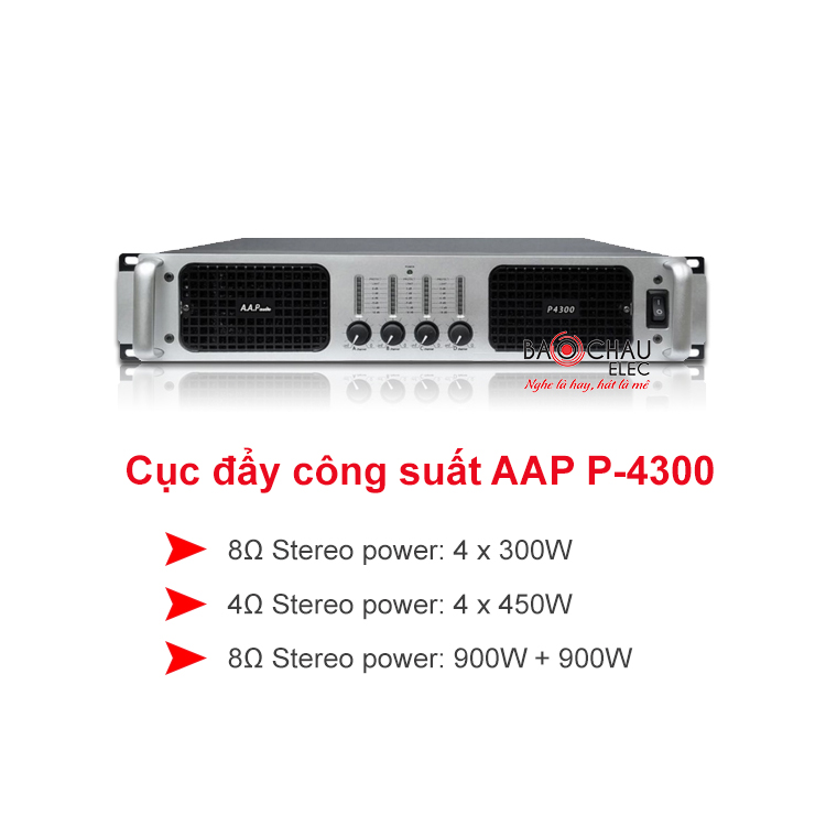 Cuc day AAP audio P4300
