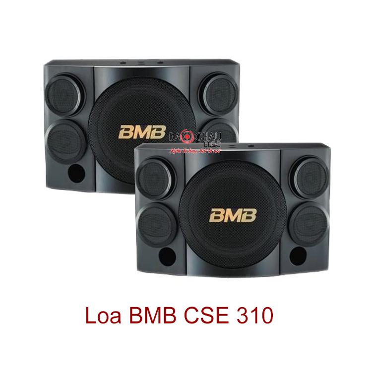 Loa BMB CSE 310(SE)