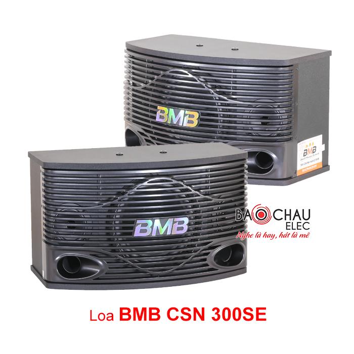 Loa CSN 300SE