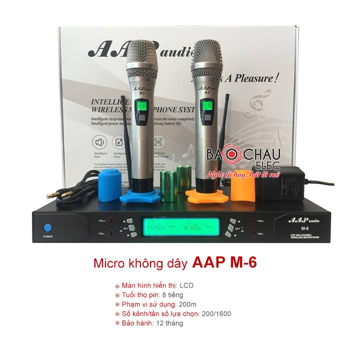 Micro AAP M6