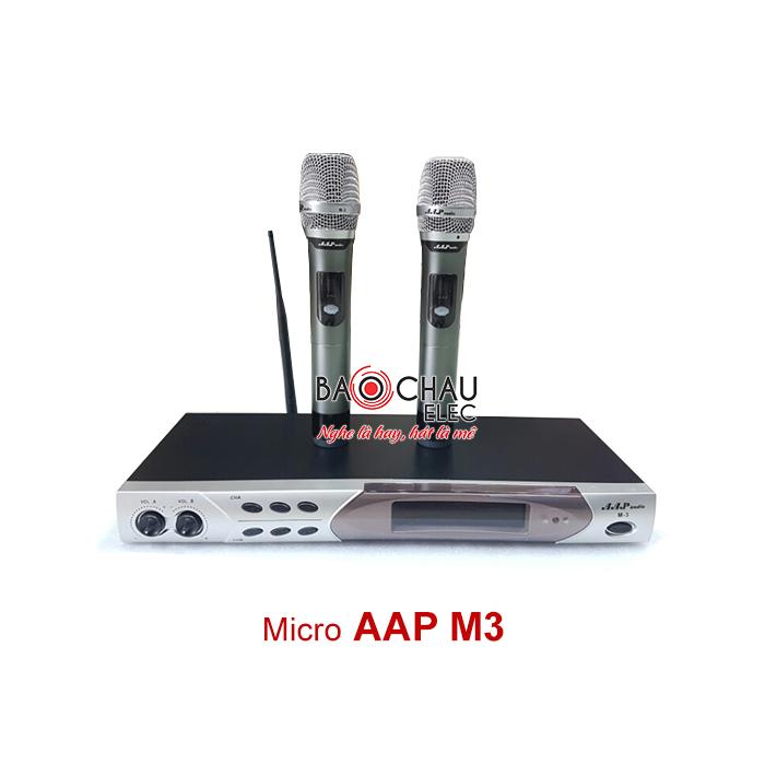 Micro AAP M3